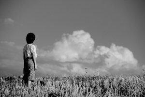 Boy standing on meadow alone